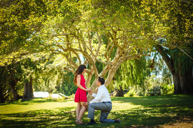Christine's story the proposal